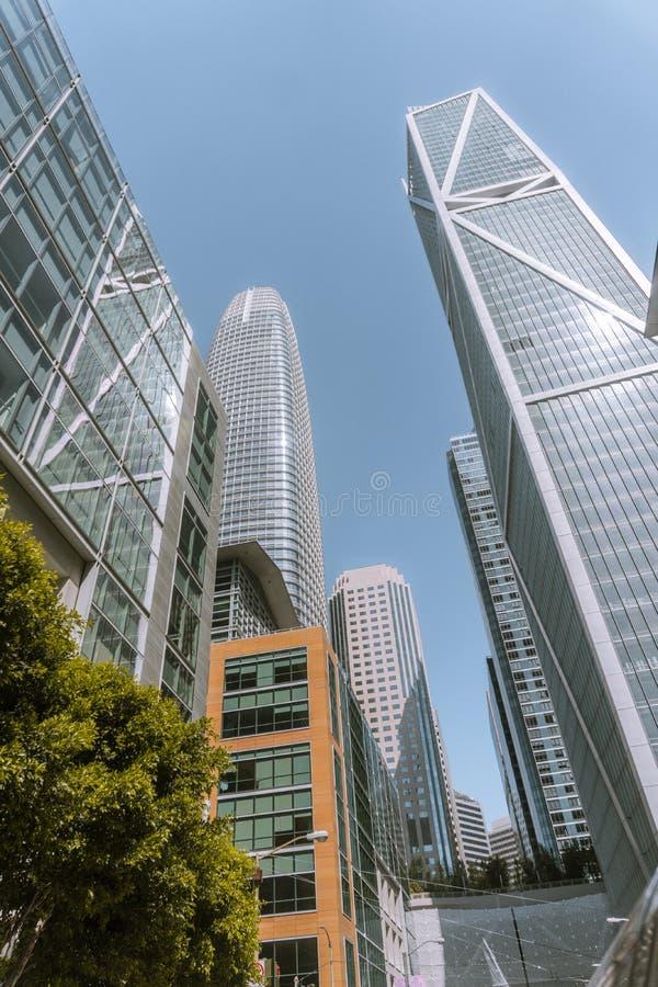 旧金山摩天大楼  免版税库存照片