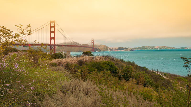 旧金山桥梁 库存照片