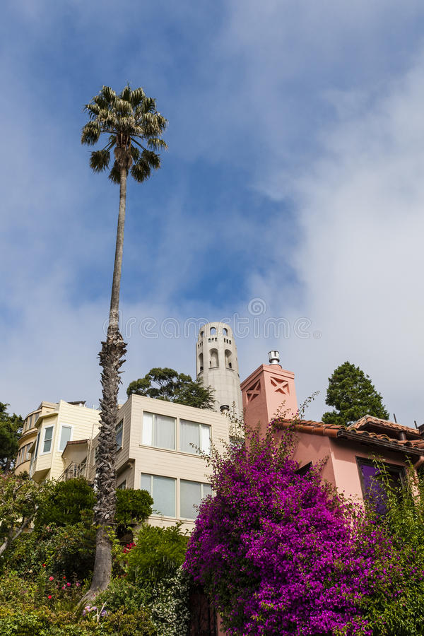 旧金山都市风景-打电报小山和Coit塔 库存照片
