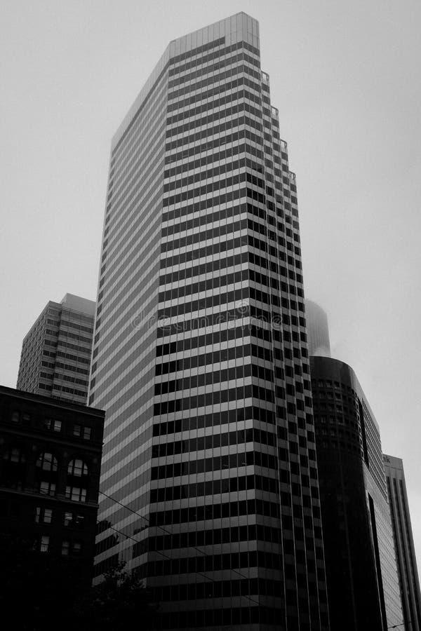 旧金山` s摩天大楼,有雾和灰色天空 免版税图库摄影