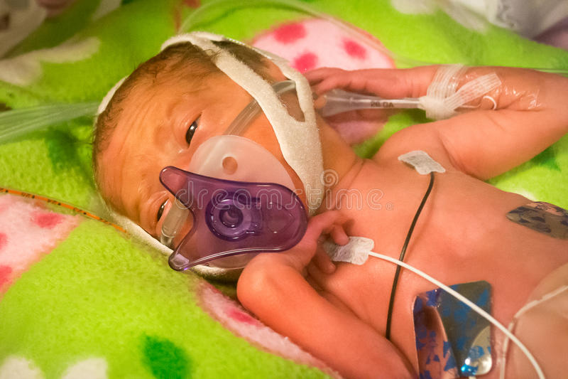 早产婴孩吮在她的安慰者的女婴 免版税库存图片