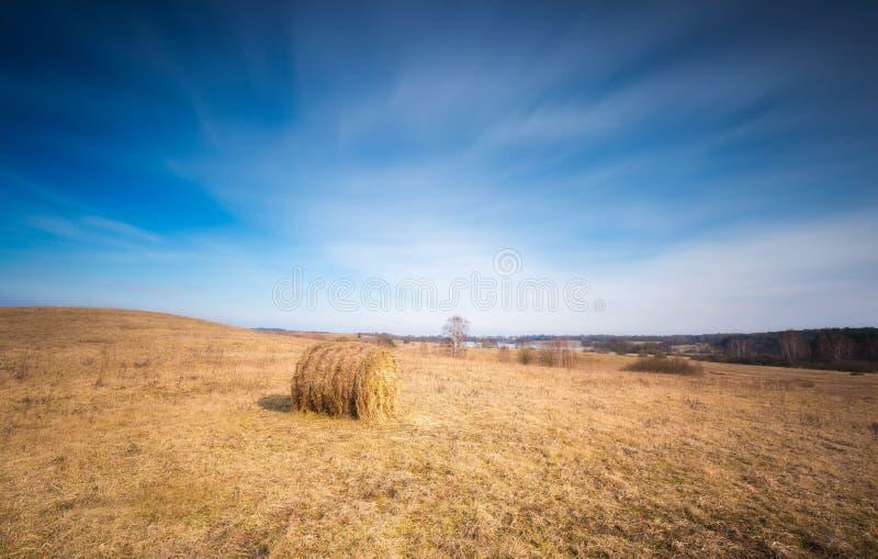 早春天草甸风景在波兰 图库摄影
