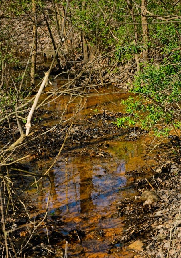 早春河流 库存图片