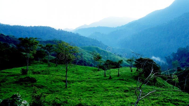 早晨上升在圣玛尔塔内华达山脉,哥伦比亚 库存图片