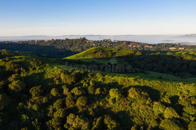 早晨光鸟瞰图在小山的在旧金山湾附近 免版税库存照片