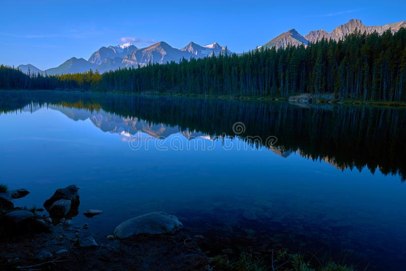 早晨反射,赫伯特湖 免版税库存照片
