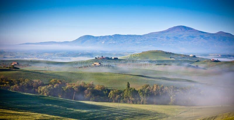 早晨在农田的雾视图在托斯卡纳,意大利 免版税库存图片