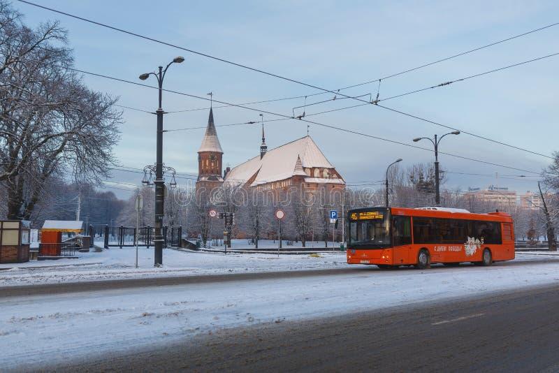 早晨在加里宁格勒,俄罗斯 免版税库存图片