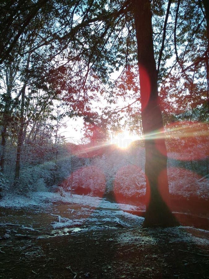 早晨太阳发光 图库摄影
