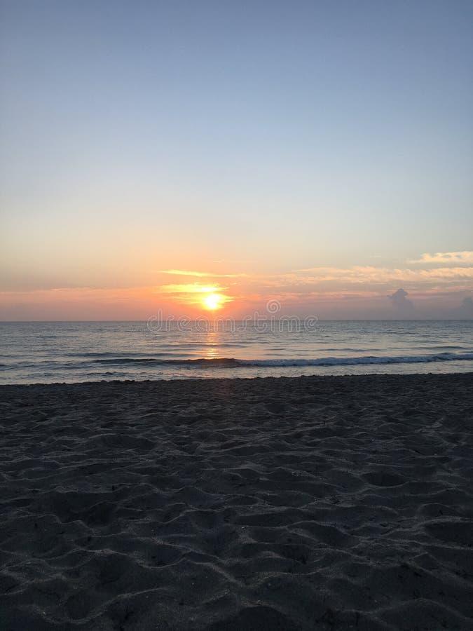 早晨好阳光 库存图片