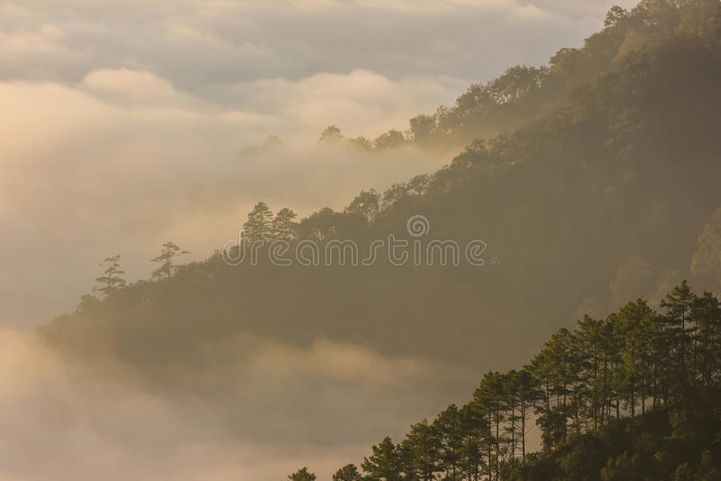 早晨薄雾和山 库存图片