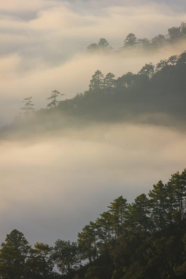 早晨薄雾和山 图库摄影