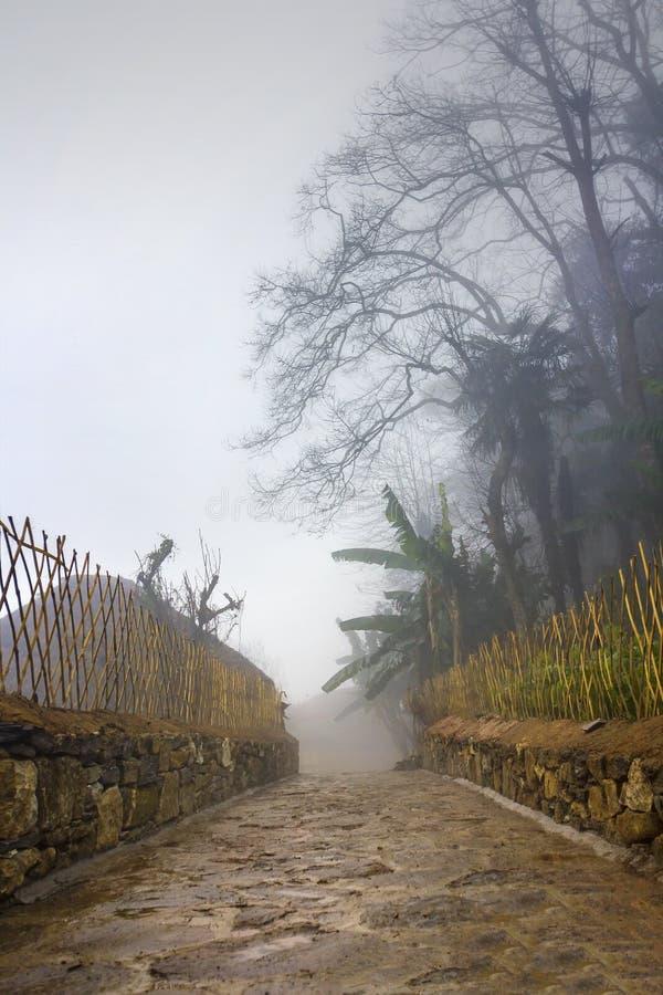 早晨薄雾在山村 库存图片