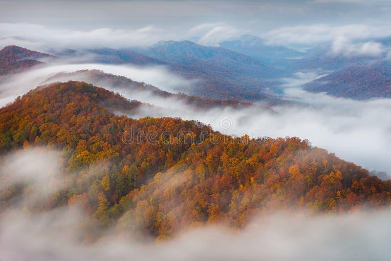 早晨雾和秋天颜色,阿巴拉契亚山脉 免版税库存照片
