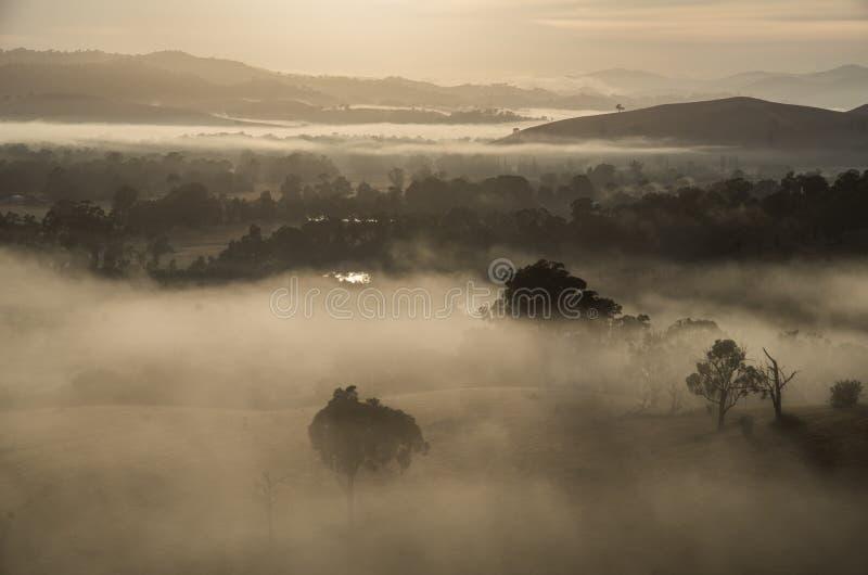 早晨雾在Goulburn河谷在维多利亚,澳大利亚 免版税库存照片