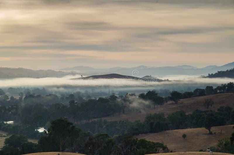 早晨雾在Goulburn河谷在维多利亚,澳大利亚 库存图片