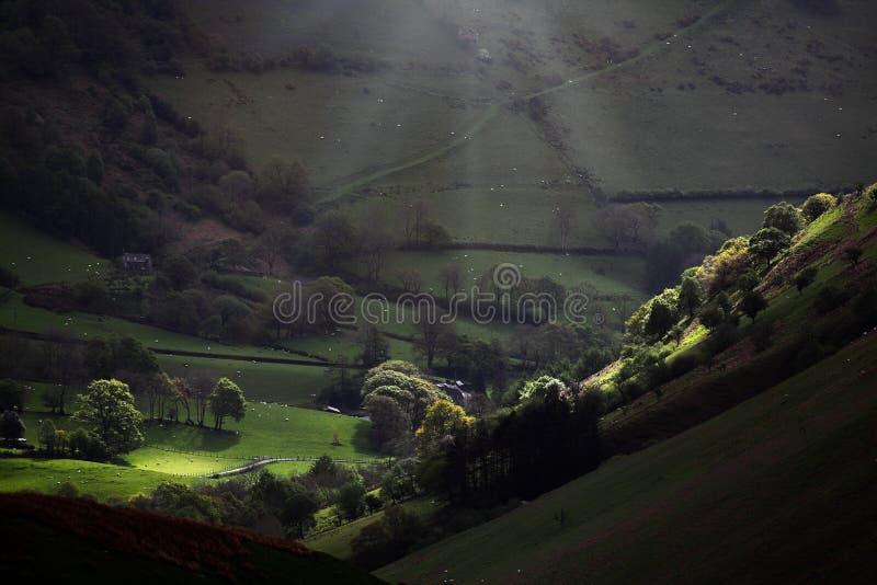 早晨轻的谷风景 库存图片