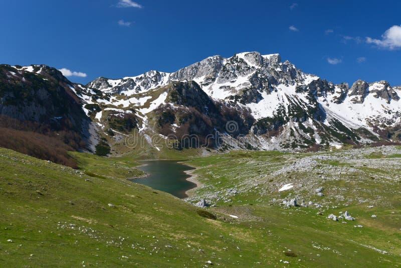 早期的春天的,黑山国家公园杜米托尔国家公园 库存图片