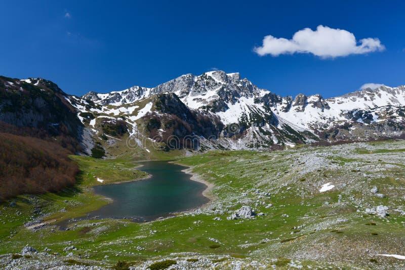 早期的春天的,黑山国家公园杜米托尔国家公园 免版税库存照片