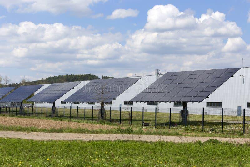 早期的春天自然的太阳动力火车 库存照片
