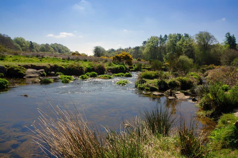 早期的春季的箭河在Postbridge, Dartmoor Na 库存图片