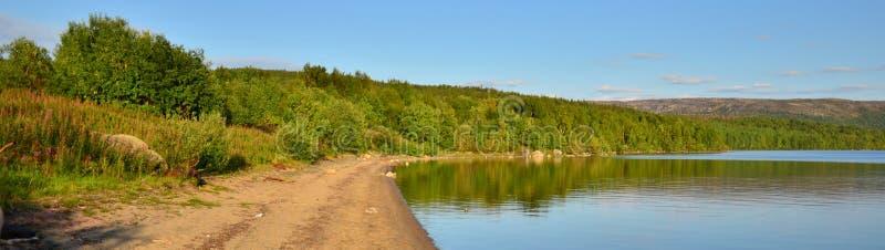 早期的湖早晨岸夏天 库存图片