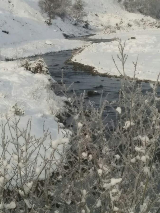 早期的雪 免版税库存照片
