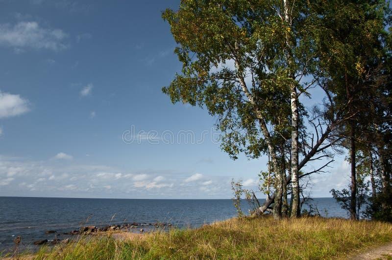 早期秋天的海岸线 库存照片