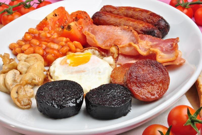 早餐爱尔兰大牌照 免版税库存照片