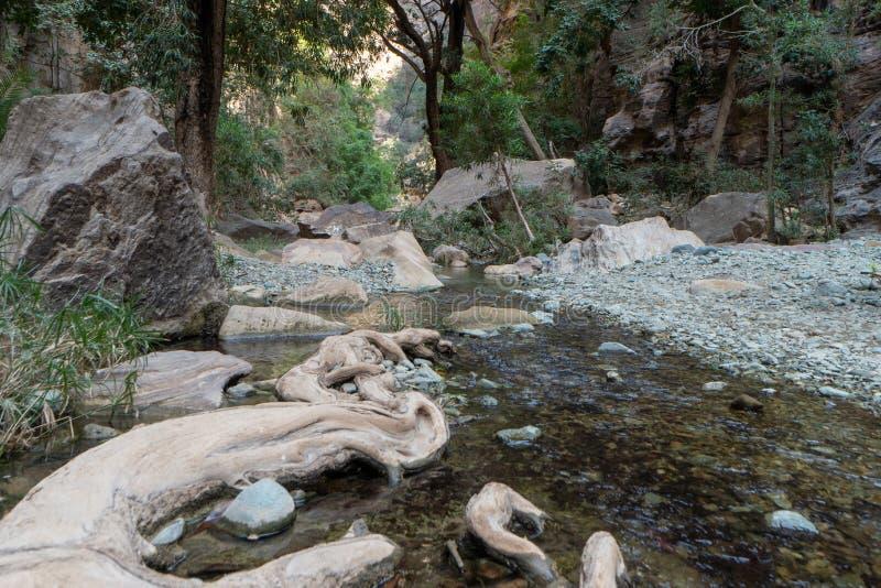 旱谷Lajab在吉赞省,沙特阿拉伯 免版税库存照片
