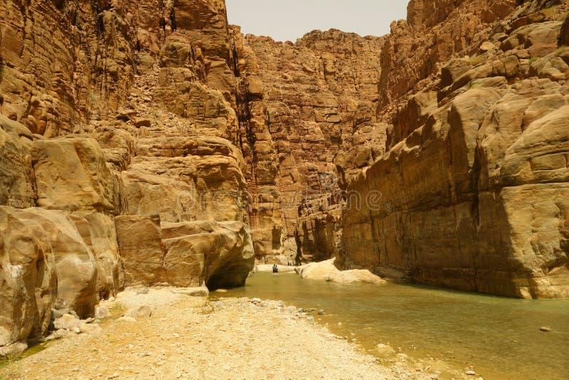 旱谷Mujib峡谷 图库摄影