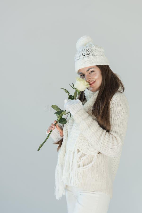 时兴的冬天毛线衣和围巾嗅白色玫瑰的可爱的妇女和看被隔绝的照相机 库存图片