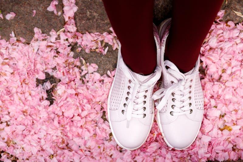 时尚博克神色 在桃红色背景的白人妇女的运动鞋 平的位置 免版税库存照片