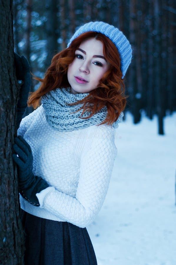 年轻时尚妇女在冬天森林里 免版税库存图片