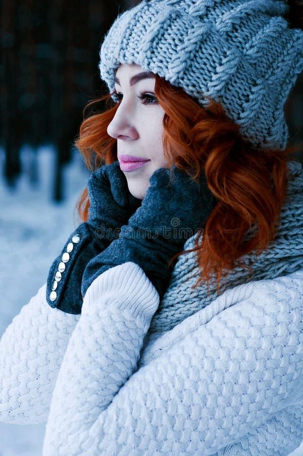年轻时尚妇女在冬天森林里 库存图片