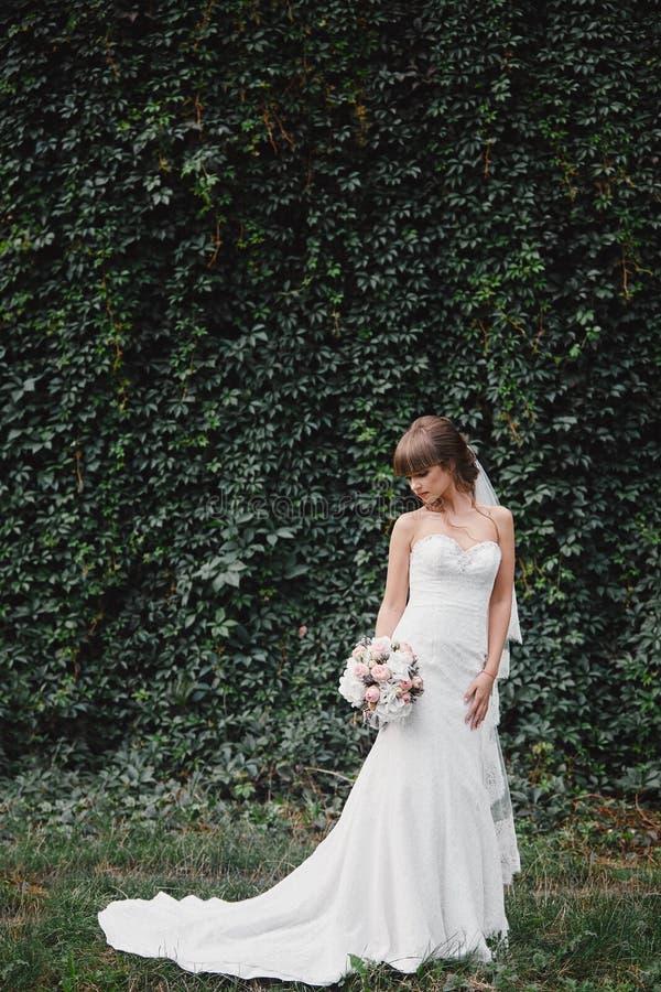 时尚婚纱的美丽的新娘在自然本底 o 一张美丽的新娘画象 免版税库存照片