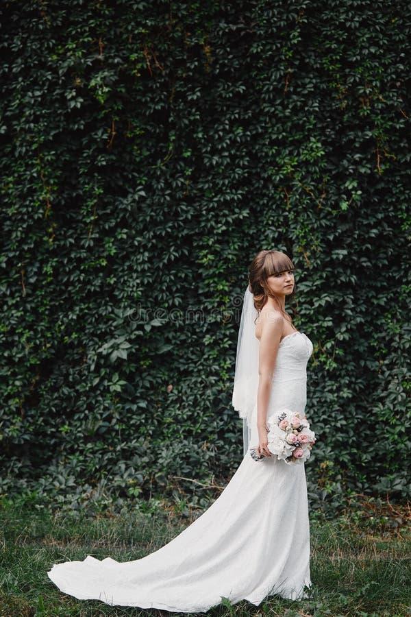 时尚婚纱的美丽的新娘在自然本底 o 一张美丽的新娘画象 库存图片