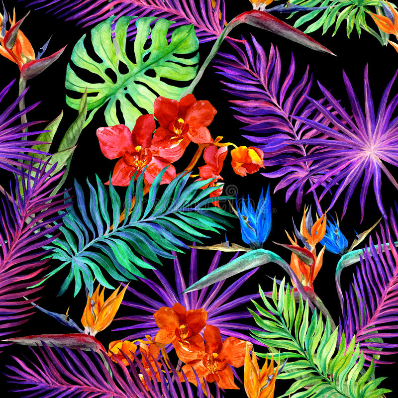 时尚的热带设计:异乎寻常的叶子,兰花在霓虹灯开花 无缝的模式 水彩 向量例证