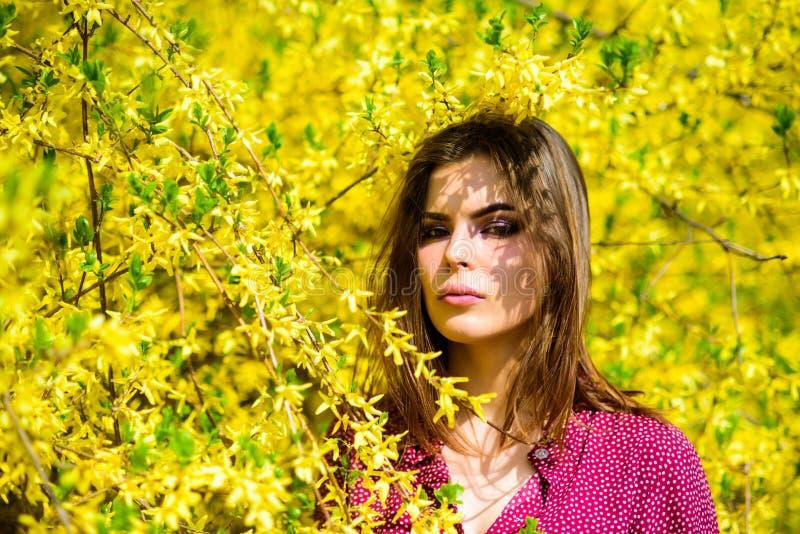 时尚秀丽 自然美人构成 头发时尚 俏丽的妇女skincare 象自然的女孩 性感的妇女在春天 库存图片