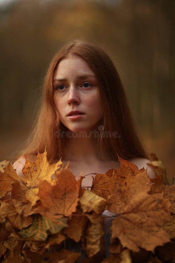 时尚秋天模型,秋天叶子穿戴,秀丽女孩 库存照片
