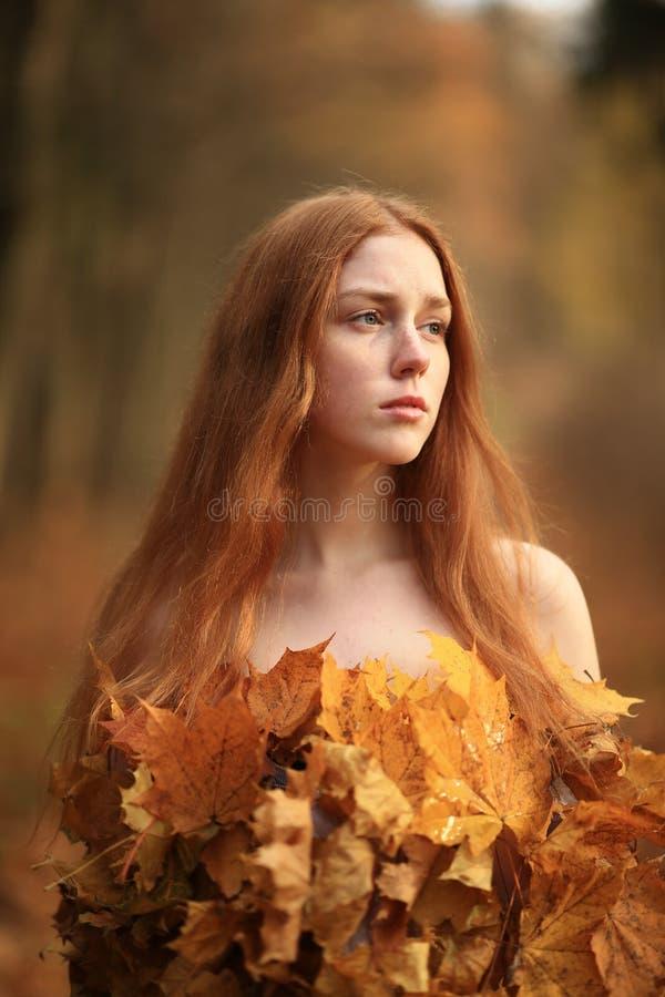 时尚秋天模型,秋天叶子穿戴,秀丽女孩 免版税图库摄影