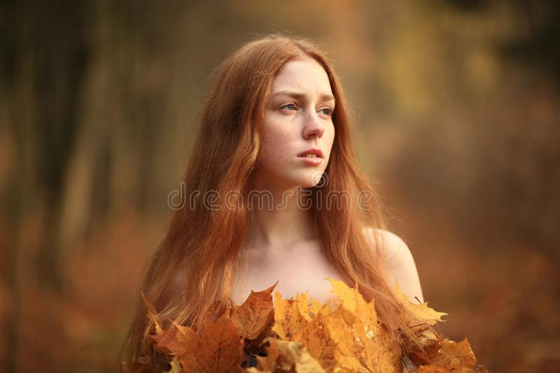 时尚秋天模型,秋天叶子穿戴,秀丽女孩 免版税库存图片