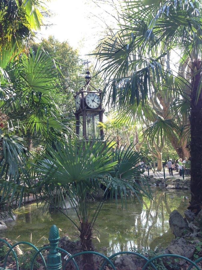 时钟绿色公园放松时间 图库摄影