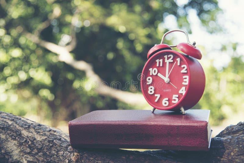 时钟 时间安排 红色时钟和书在木自然在公园 免版税图库摄影
