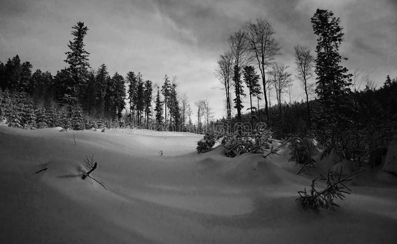 时间冬天 免版税库存照片