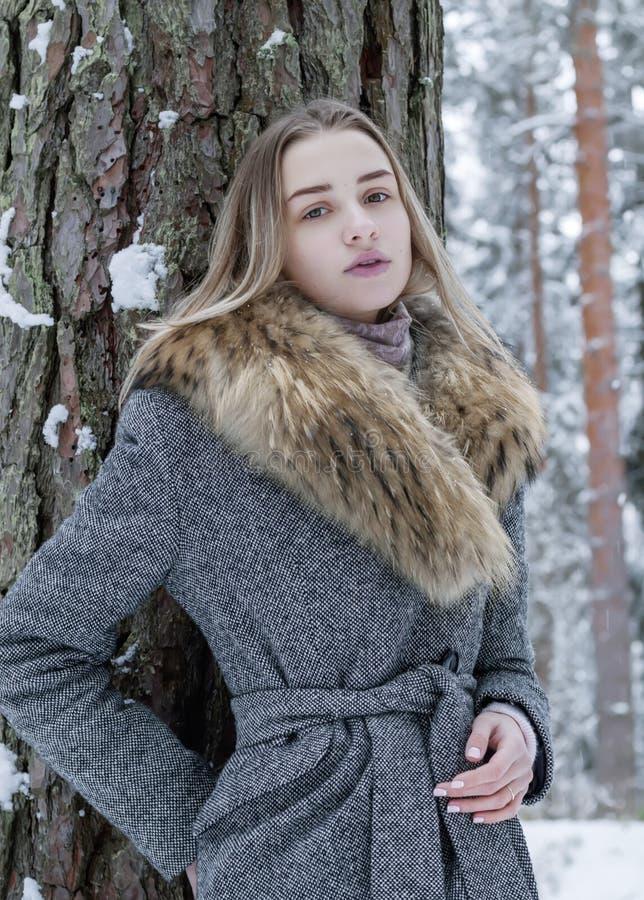 时髦地穿戴了,一件灰色外套的美女有毛皮衣领的在冬天森林里单独站立,倾斜反对tre 图库摄影