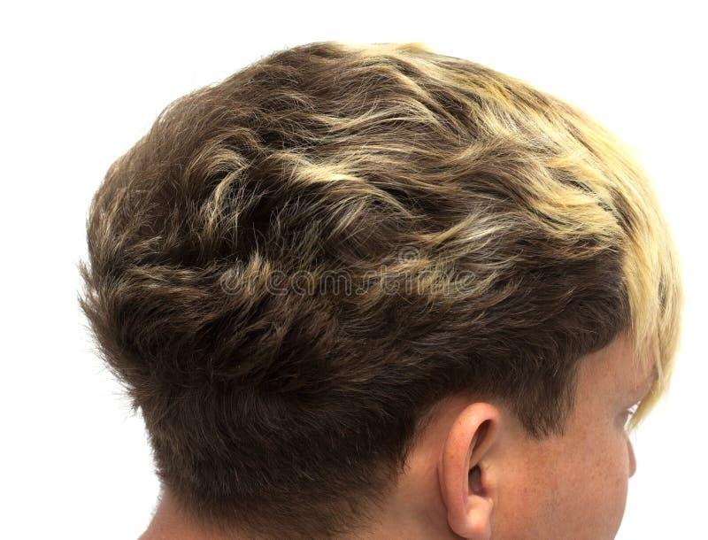 时髦的人` s发型图片