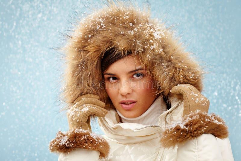 时髦的冬天 图库摄影