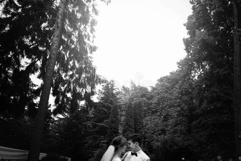 时髦的华美的愉快的执行他们的第一个舞蹈的新娘和典雅的新郎在结婚宴会 免版税图库摄影