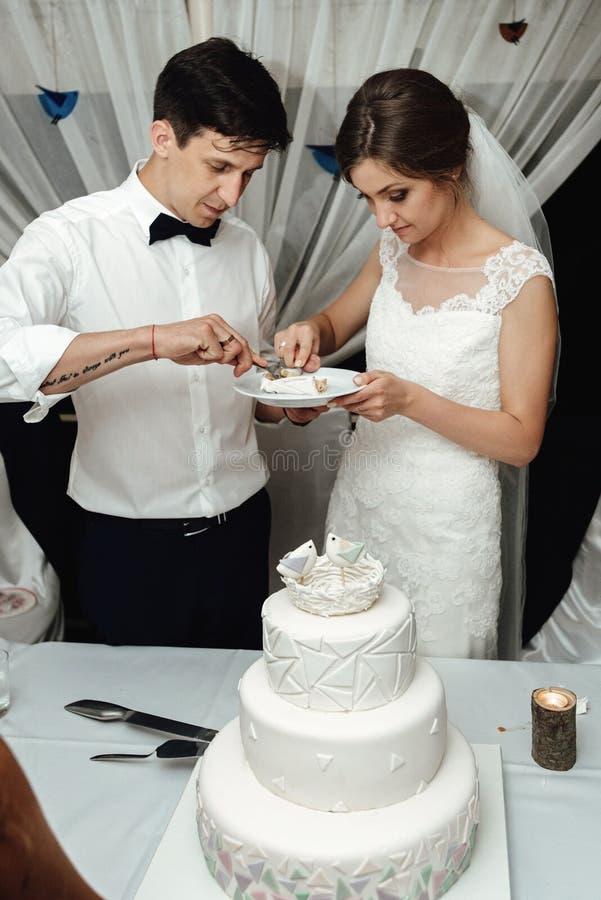 时髦的华美的新娘和典雅的新郎切口和品尝联合国 免版税库存照片